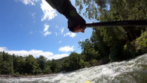 Great White water paddling